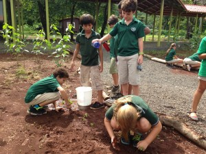 4th Graders Tending to the Garden